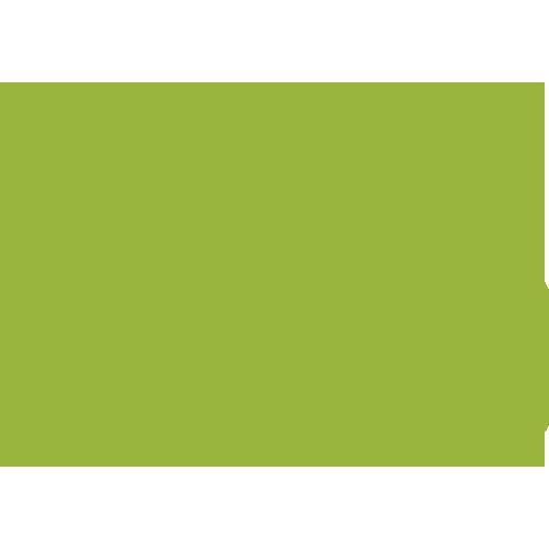 icono-precio-verde