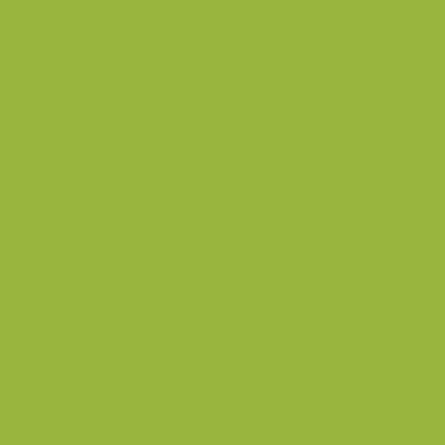 icono-tick